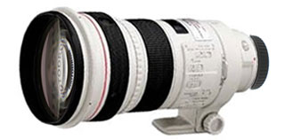 Canon EF 300 mm F 2.8 L IS USM