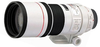 Canon EF 300 mm F 4 L IS USM