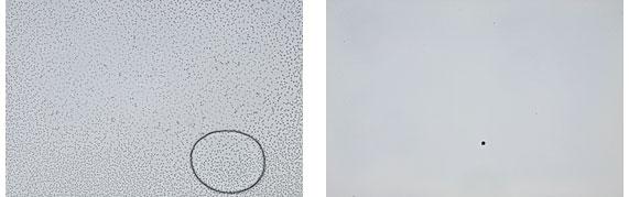 Проверка зеркального фотоаппарата на наличие пыли в матрице